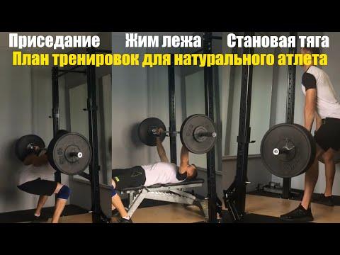 План тренировок для натурального атлета!