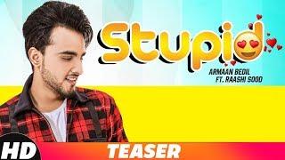 Teaser| Stupid | Armaan Bedil Ft. Raashi Sood | Tru Makers | Releasing on 24th Nov
