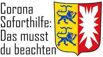 Corona Soforthilfe beantragen (Schleswig-Holstein) So beantragst du staatliche Unterstützung
