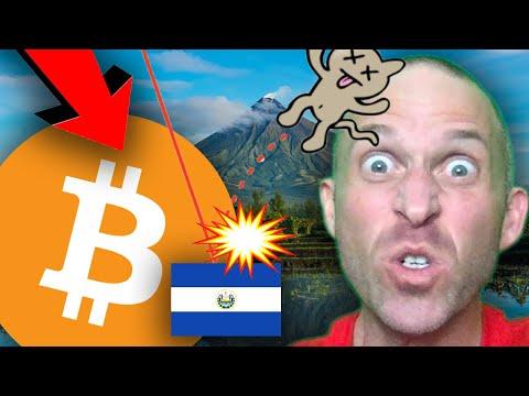 BEAR MARKET DEAD CAT BOUNCE??? CONSPIRACY TO TAKE DOWN BITCOIN!!!!! [buy bitcoin at THIS bottom..]