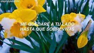 YOUNHA (ft. RM of BTS) - Winter Flower (Traducida al español)