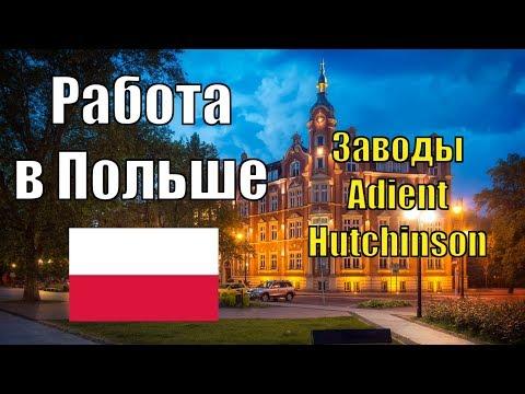 Работа в Польше. Актуальные вакансии и зарплаты. Завод Adient и Hutchinson