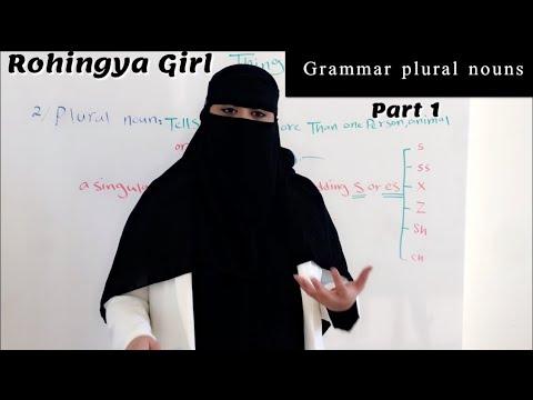 Lesson(10)Grammar Plural Nouns