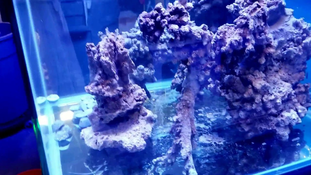 Aquascape For A 93 Cube Youtube