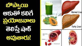 Kidney,Low Blood Sugar,Strengthen Liver | Health benefits Of Papaya Juice | 15 Amazing Benefits