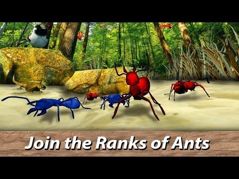 🐜Ants Survival Simulator   go to insect world!-  By Wild Animals World-Android