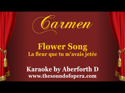 Carmen - La fleur que tu m'avais jetée (Flower song) - Backing track