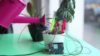 Tweeting DIY Thirsty Plant Thumbnail