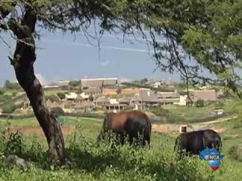 Nkandla residents hurt by the Presidents homestead splurge