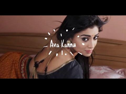 AVA KANNU - SHIINDHU KINGZZ & SAI [TAMIL RAP LYRICAL VIDEO]
