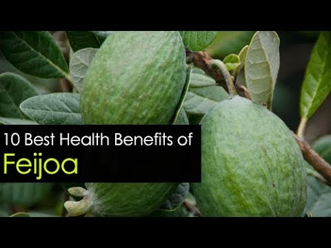 10 Benefits Of Feijoa Fruit - Nutritional And Health Benefits