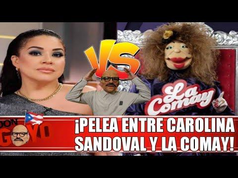 Carolina Sandoval La Venenosa Se Enfrenta A La Comay Youtube
