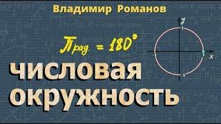 ЧИСЛОВАЯ ОКРУЖНОСТЬ 10 класс тригонометрия