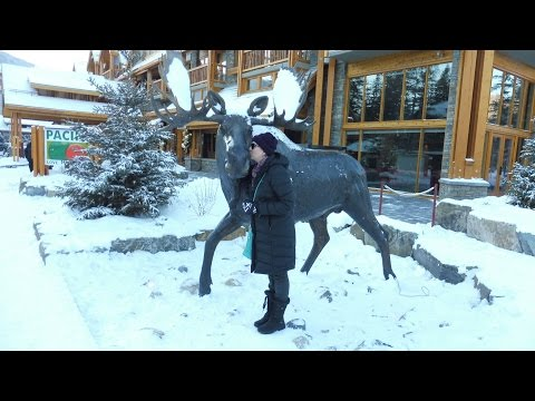 The Moose Hotel And Suites - Pictorial Review From Our 2016 White Christmas Adventure