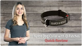 Multipurpose Nylon Dog Collar With Id Patches - Quick Review