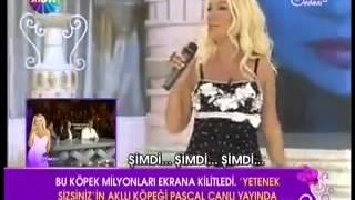 Seda Sayan-Asi Sevda klip (söz-Serdar Ortaç müzik-Suat Aydoğan)