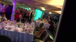 Сосновый бор подсветка  шатра свадьба Иваново