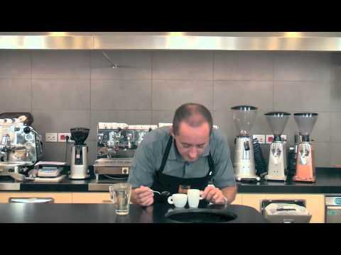 Kenya AA Top Quality - Sandalj Excellence Coffees **