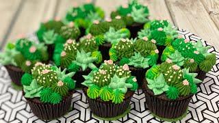 Succulent | Cactus CupCakes
