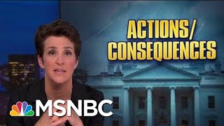 roiled-by-trump-politics-noaa-seeks-accountability-atonement-rachel-maddow-msnbc