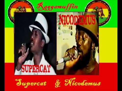 Nicodemus & Supercat - Prerogative!