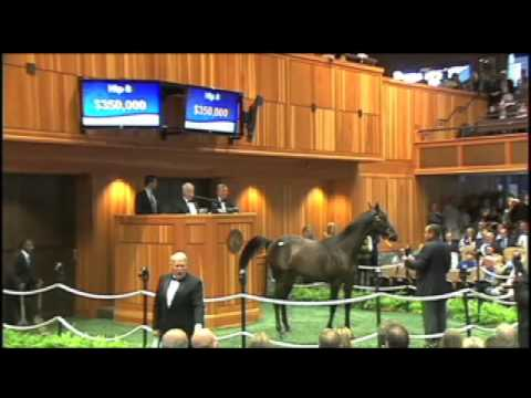Horse goes for $1.2 million at Saratoga's Fasig-Tipton auction