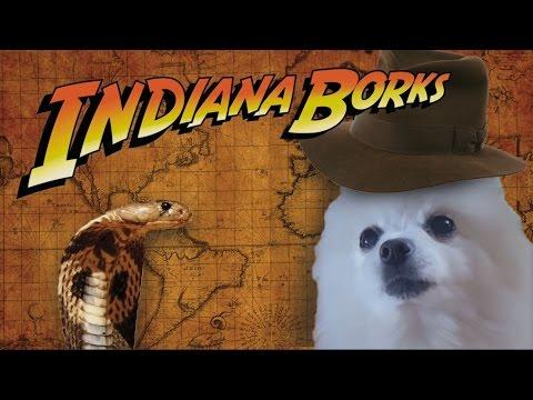 Indiana Borks