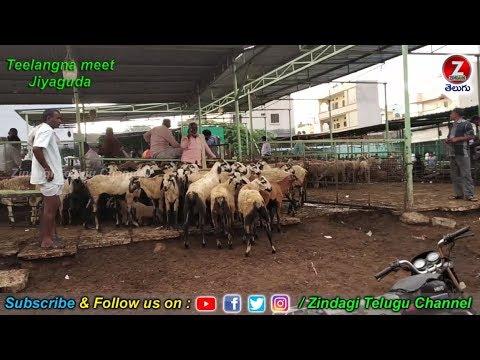 హైదరాబాద్-oldcity-జియగుడా-మేకల-మండి...