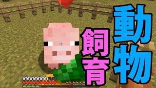 08081-minecraft_thumbnail
