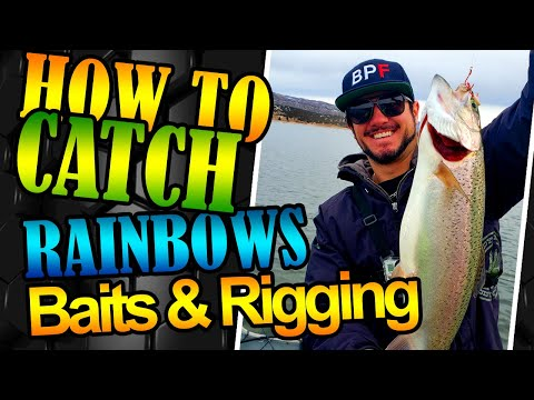 How To Catch Rainbow Trout Catching Rainbow Trout At Rockport Reservoir Utah Bendoski Power Fishing