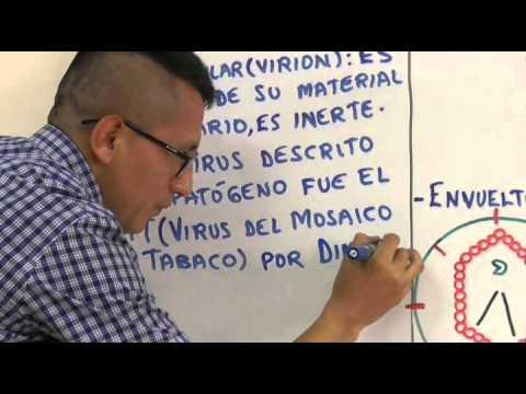 Biología 2 Virus y Bacterias - Pedro Pedrozo