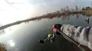 თევზაობა დიღმის ტბებზე