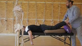 видео Альтернативные способы лечения боли в области поясницы