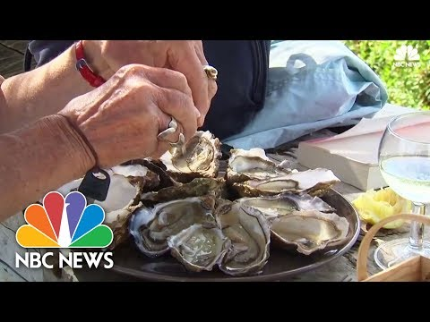 Oyster Vending Machines Installed At French Seaside Resort | NBC News