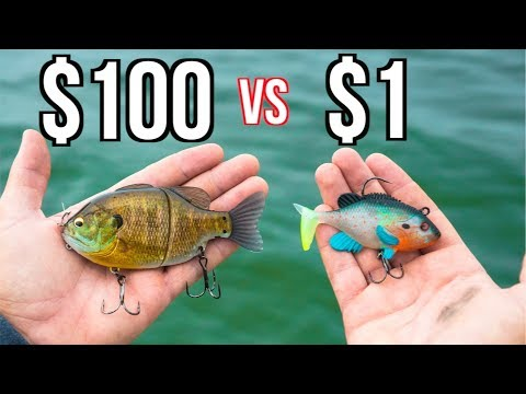 CHEAP vs EXPENSIVE Swimbait Fishing CHALLENGE!!!!