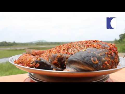 To Cook Snake Head Fish Fry,Thala Curry , & Prawn Fry Recipe | SALT N PEPPER 31 07 2016