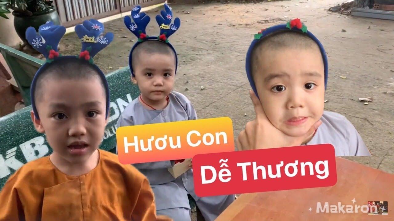 🔴Pháp Tâm Trở Thành Thông Dịch Viên Của Đức Tâm | 5 Chú Tiểu Ngoại Truyện