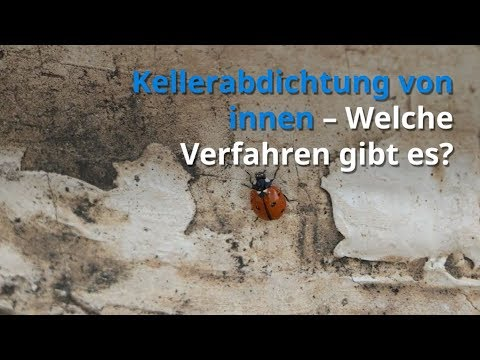 Kellerabdichtung von innen – Welche Verfahren gibt es