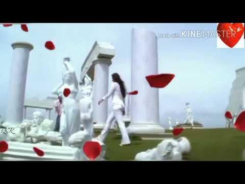 💝Aaya re aaya re aye dil tum pe aaya re o sanam whatshaap status video song 💔