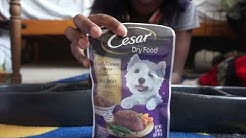 Taste Test and Review: CESAR® Dry Filet Mignon Flavor Dry Dog Food