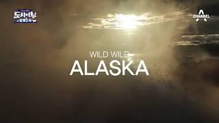 [도시어부 다음이야기] 도시어부 와일드 알래스카로 떠나다...! / 채널A 도시어부 50회