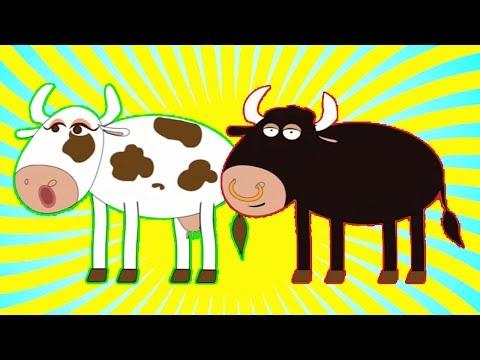 Señora Vaca, Sr. Toro | Y muchas más canciones infantiles | ¡44 min de Lunacreciente!