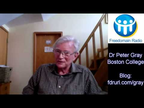 'School Is A Prison!' - Dr Peter Gray Interviewed on Freedomain Radio.mp4