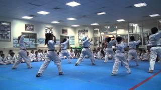 Taekwondo Demonstration - Music poomsae