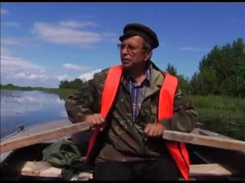 Белозерск. Сквозь пелену тысячелетий
