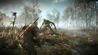 The Witcher 3: Wild Hunt - Downwarren Gameplay