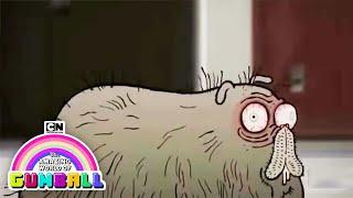 Chris Morris the Hamster I The Amazing World of Gumball I Cartoon Network