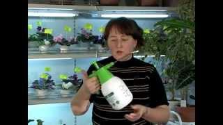 3_Полив и опрыскивание. Уход за комнатными растениями. Часть 3(Мы хотим познакомить вас с тем, как правильно выращивать комнатные растения. Ответить на возникающие у..., 2014-05-17T12:57:09.000Z)