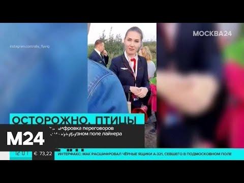 Опубликована расшифровка переговоров пилотов севшего A321 - Москва 24