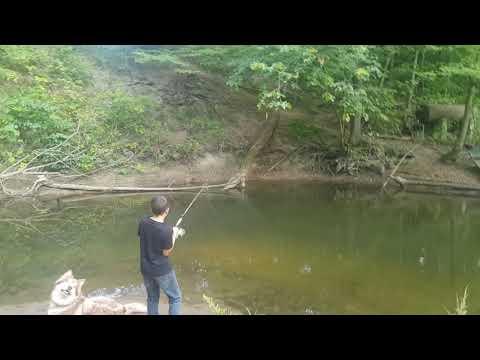 Steelhead Fishing Northwest Indiana